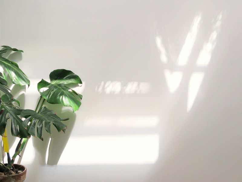 Luz natural en nuestros hogares