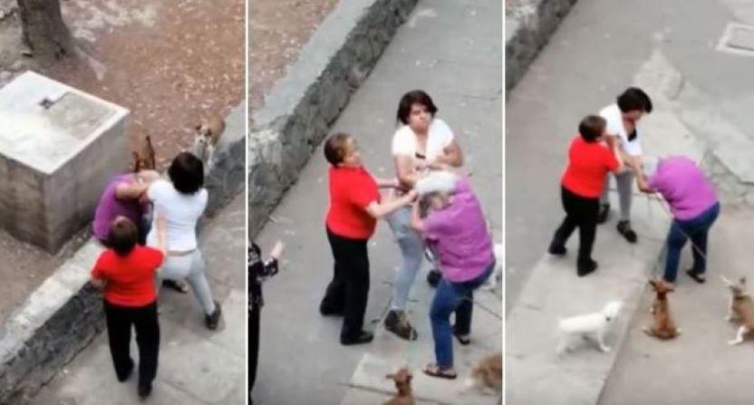 abuelita Tlatelolco - Mujer agrede a abuelita y patea a un perro en Tlatelolco (VIDEO)