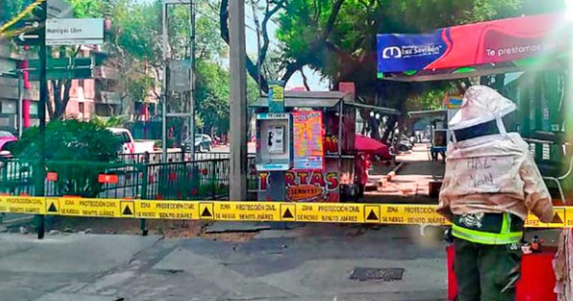 Abejas atacan a 20 personas en la alcaldía Benito Juárez  - Abejas atacan a 20 personas en la alcaldía Benito Juárez