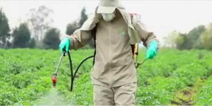 Semarnat, contra plaguicidas