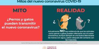 Salud informa sobre los mitos y realidades del Covid-19