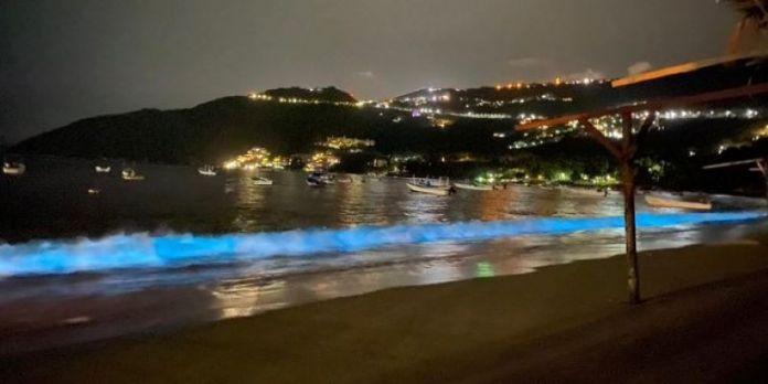 Sorprende bioluminiscencia en playas de Acapulco