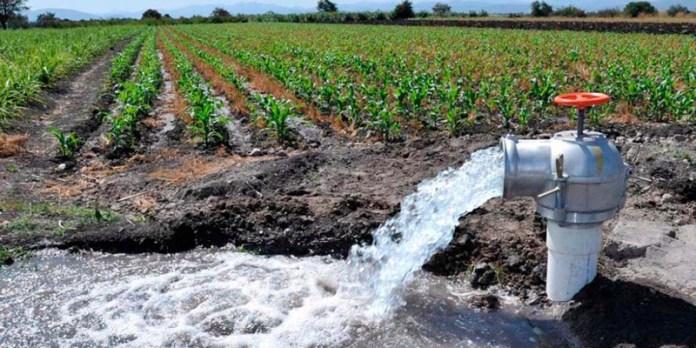 Sader y Conagua: garantía de líquido para distritos de riego