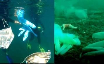 Nueva Normalidad, también cuidar el mar