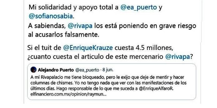 Raymundo Riva Palacio difama