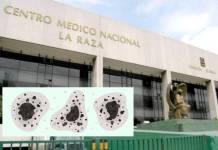 """Fallece Gregorio, primer caso sospechoso de """"hongo negro"""" en Edomex"""