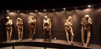 ¿Las momias como espectáculo en una plaza comercial? Así las cosas en Guanajuato