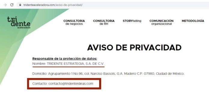 ¿Empresa de Gabriela Warkentin lidera red antiAMLO? Esto es lo que se sabe