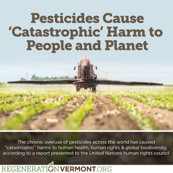 Pesticides Cause 'Catastrophic' Harm to People and Planet ...