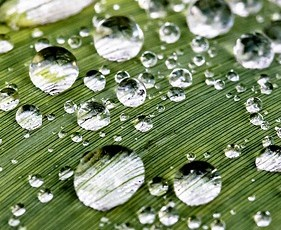 Sauberes Regenwasser