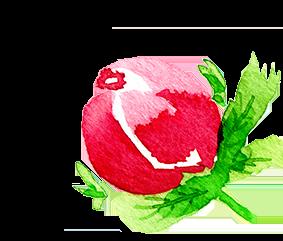 Regina Dambeck Musterdesign Onlineschule Blume