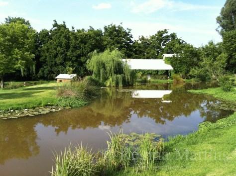 Nirox Farm