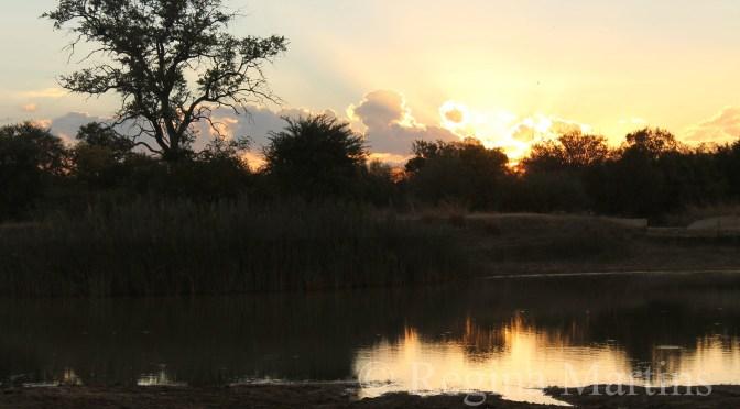 WordPress Weekly Photo: Serenity – An African Sunset