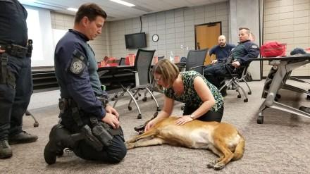Emergency First Aid on Canine Training, 2017