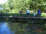 Rundgang Teiche mit Seerosen