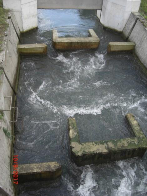 Fischtreppe oberer Zulauf