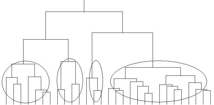 クラスター分析イメージ
