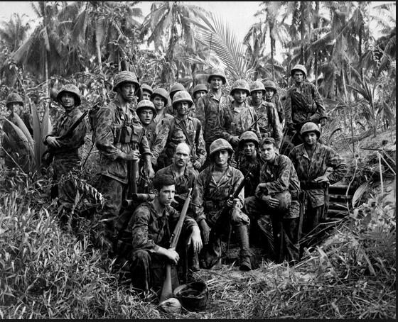 vietnam war jungle