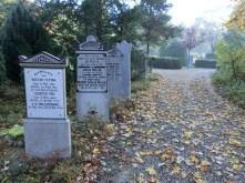 Enekele grafzerken van geruimde graven staan ter 'versiering' langs een looppad. Licentie CC-BY. Foto: Regionaal Archief Alkmaar