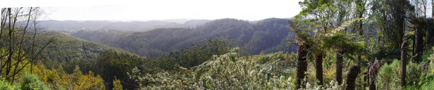 grand ridge road2