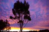 sunset july 17 16 a