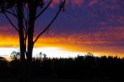 sunset july 17 16 b
