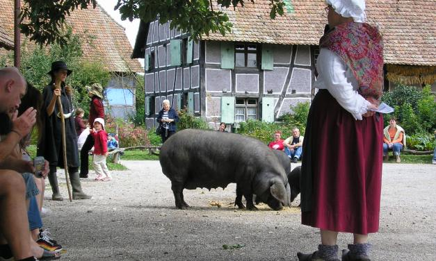 L'Écomusée d'Alsace
