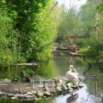 Parc zoologique du Bois de Boulogne (Zoo de Lille)