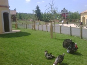 Center Parcs - Domaine des Trois Forêts ferme