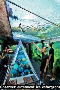 Aquarium du Périgord noir Dor