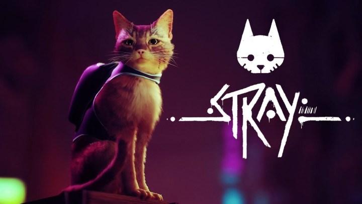 Nuevos detalles sobre la historia y jugabilidad de Stray, título de aventuras para PS5