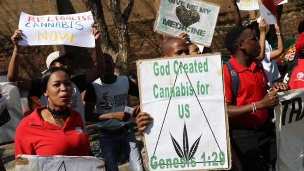 Top 8 #dagga memes we found after it was legalised