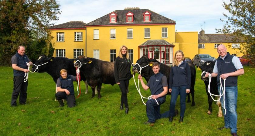 Rwandan government purchases Irish bulls to boost their breeding program.