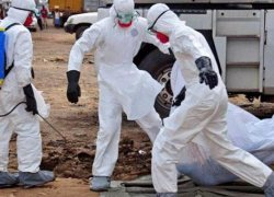 U.S. deploys disaster response team to help fight Ebola in the DR Congo.
