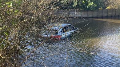 Photo of Auto te water Weidevenne