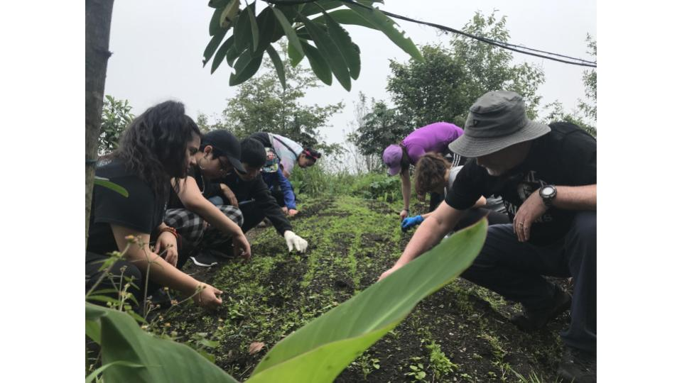 Pictured: CRLS students working on a farm in Yunguilla, Ecuador.