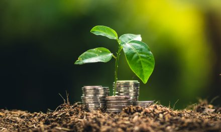 Why investors are putting sustainability at the top of the agenda