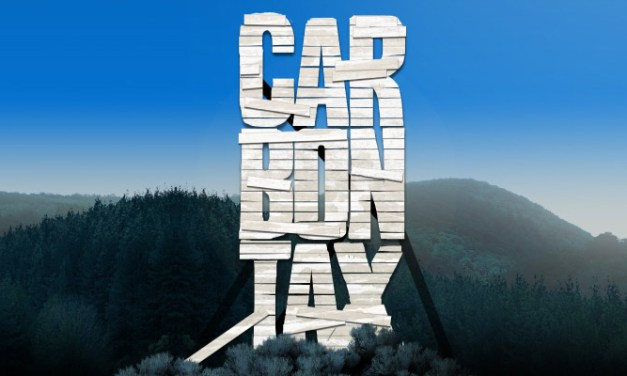 Addressing climate change through carbon taxes