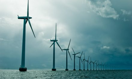Iberdrola enters Polish wind power market