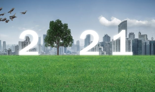 The Great Reset: 7 Environment and Sustainability Stories to Watch in 2021