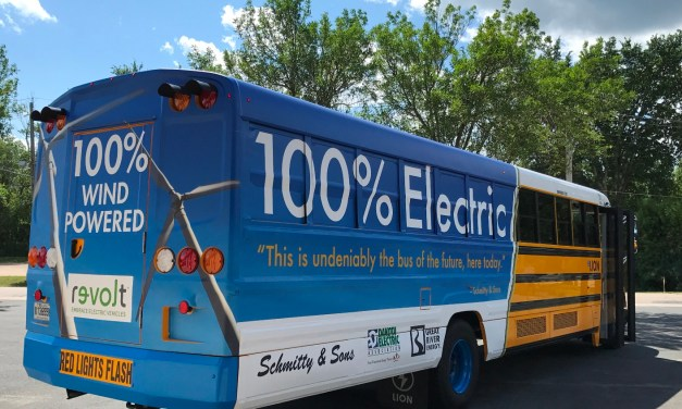 Role and opportunity for utilities in fleet electrification in the US