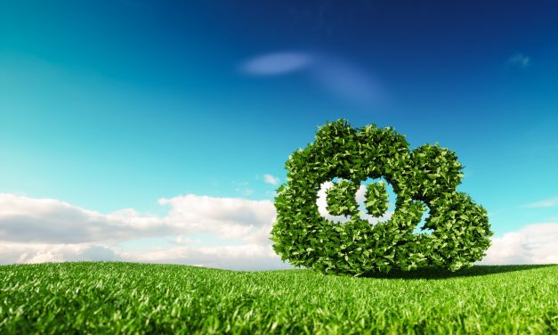 India-based ReNew Power targets net zero emissions by 2050