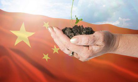 China Kicks off its Green Electricity Trading