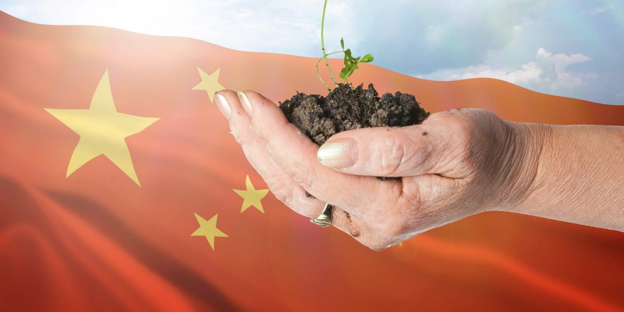 Hydrogen energy could be key to carbon neutrality in the People's Republic of China