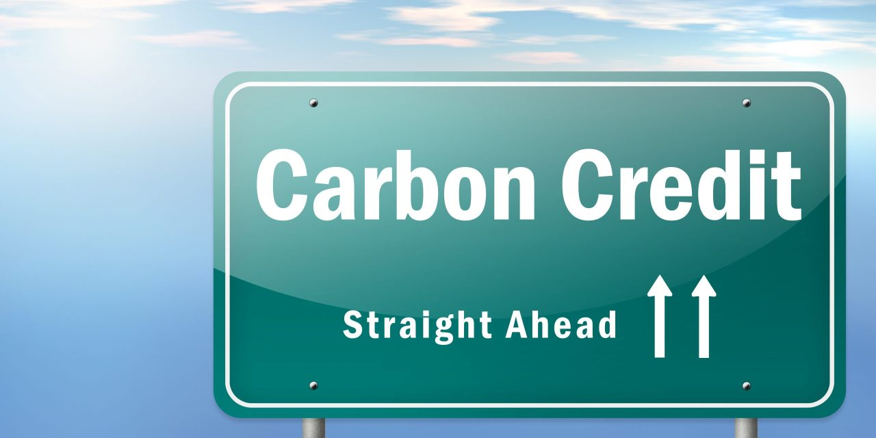 Can voluntary carbon markets change the game for climate change?