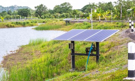 Leveraging Local Capacity for Solar Water Heaters