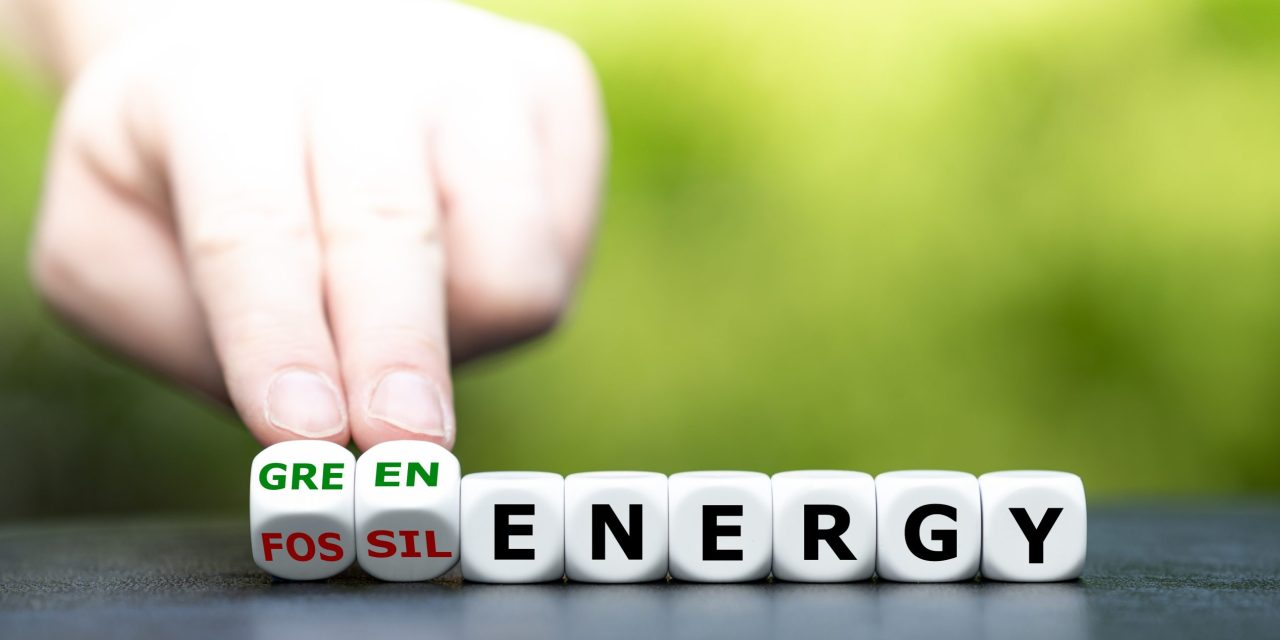 South Asia New Energy Series 2021: Towards an integrated RE-EV-H2 clean energy ecosystem