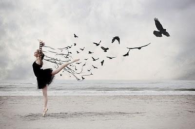 Sabiá, o pássaro que deixa o amor ir