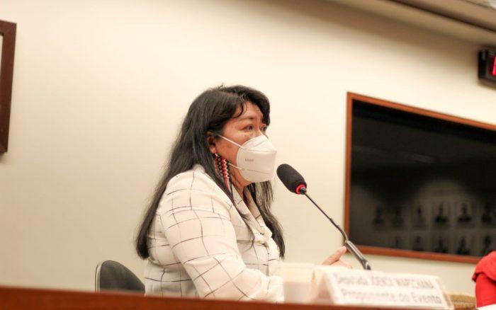 DEPUTADA JOENIA DENUNCIA AMEAÇAS A TERRAS INDÍGENAS NA COMISSÃO DO MEIO AMBIENTE