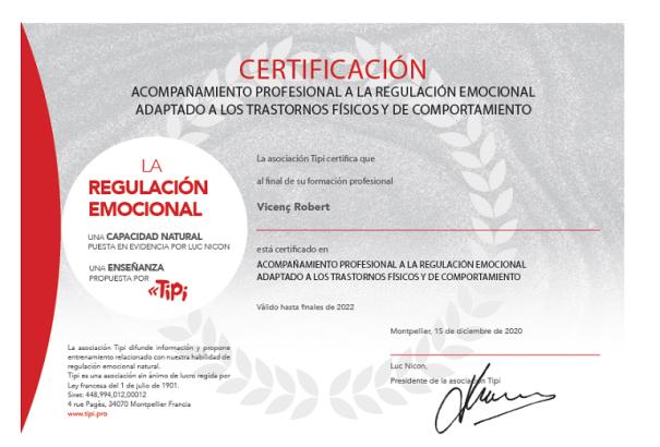 Diploma TIPI